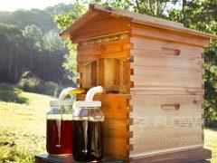 beekeeping smart